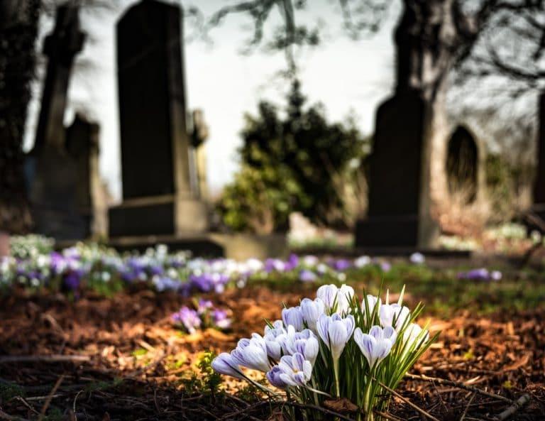 Bestattungen Kopp Friedhof